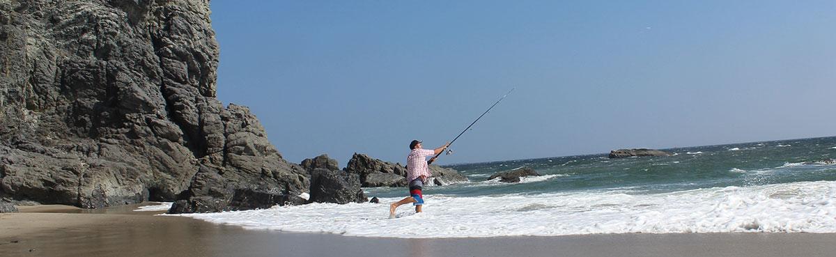 SurfResortBeachPanaramaFish