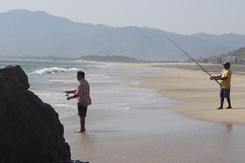 surfresortfishing
